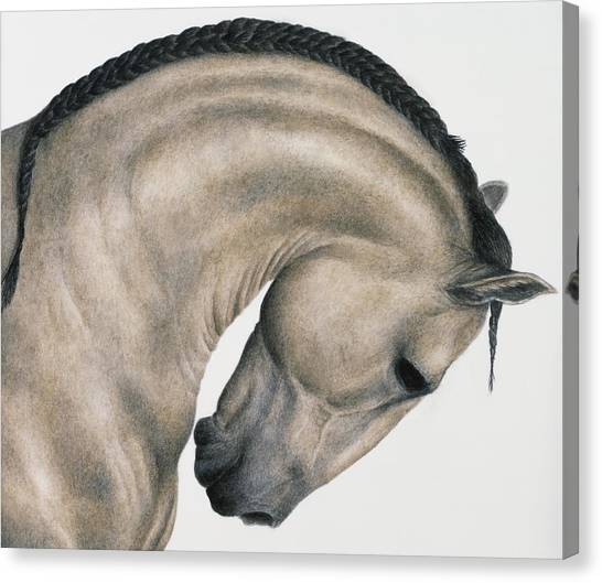 Black Braid Canvas Print