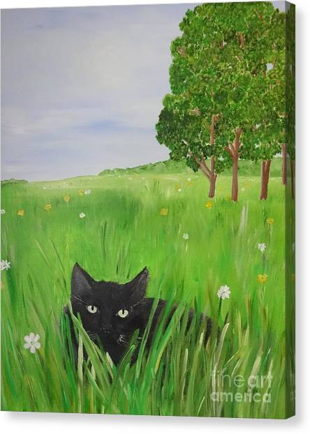 Black Cat In A Meadow Canvas Print