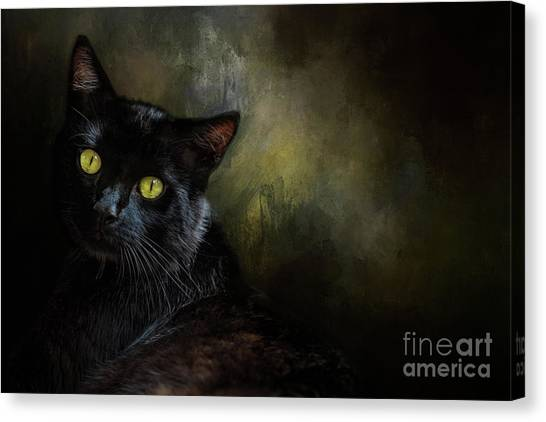 Black Cat Portrait Canvas Print