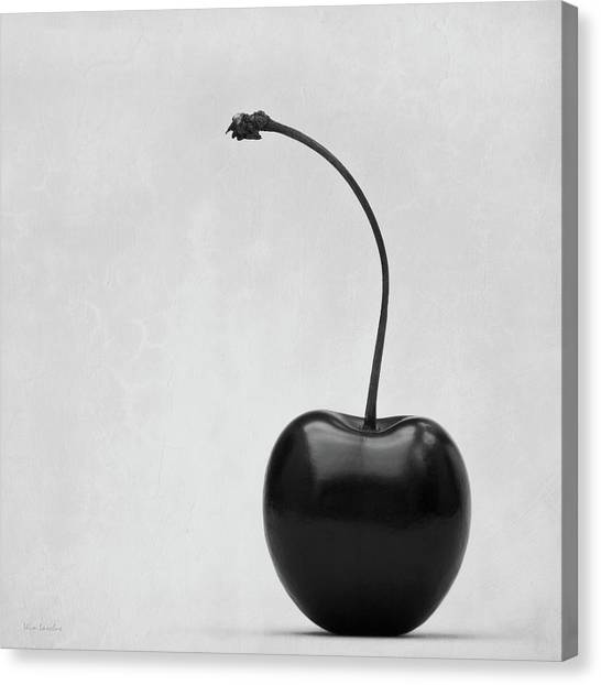 Black Cherry Canvas Print