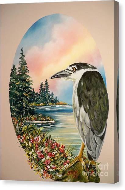 Flying Lamb Productions                     Black Crowned Heron Canvas Print