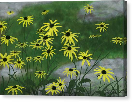 Black Eyed Susans 1 Canvas Print