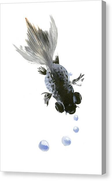 Black Fish Canvas Print
