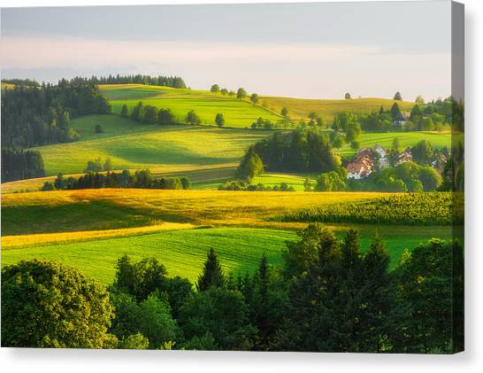 Black Forest Landscape Canvas Print