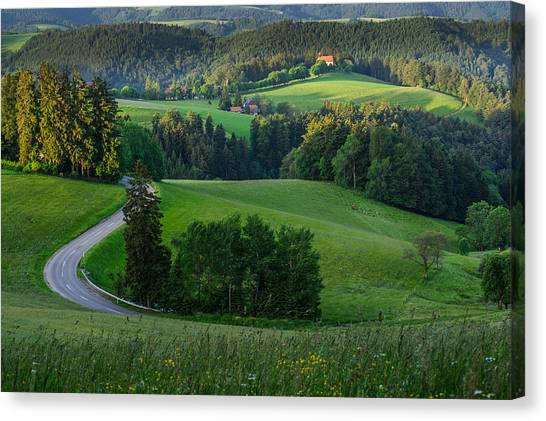Black Forest Morning Canvas Print