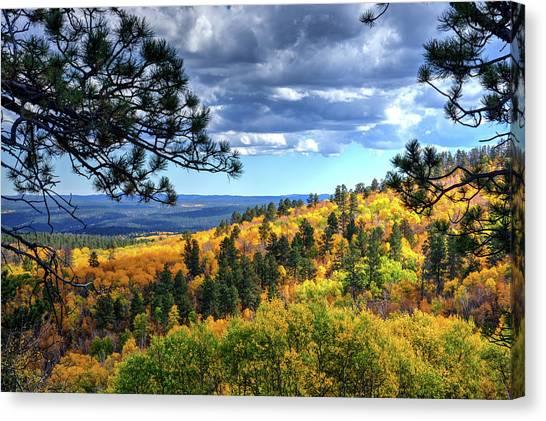 Black Hills Autumn Canvas Print