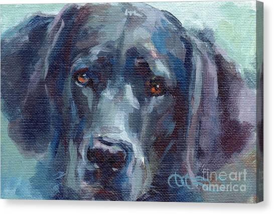 Labrador Retrievers Canvas Print - Black Lab Bandit by Kimberly Santini