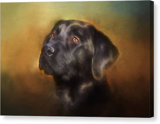 Black Lab Portrait 2 Canvas Print
