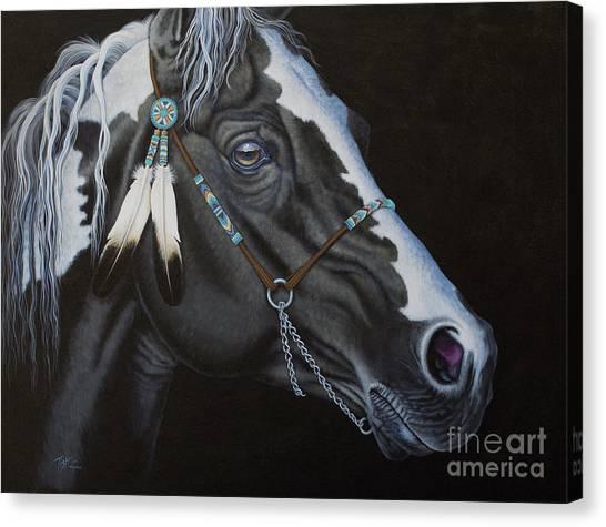 Indian Paint Horse Canvas Print