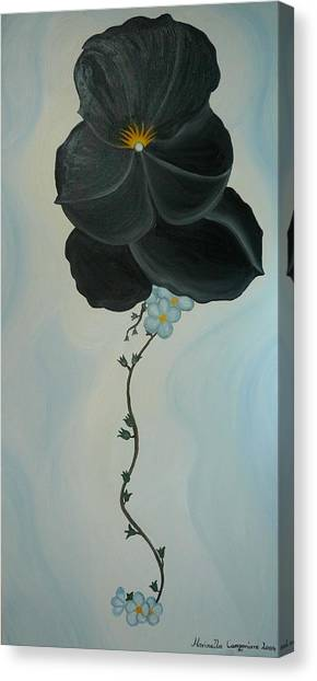Black Pansi Canvas Print by Marinella Owens