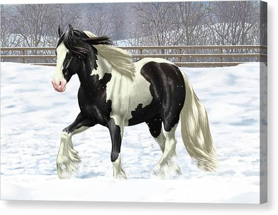 Draft Horses Canvas Print - Black Pinto Gypsy Vanner In Snow by Crista Forest