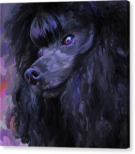 Black Poodle - Square Canvas Print