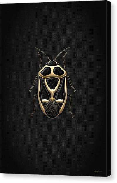 Gold Canvas Print - Black Shieldbug With Gold Accents  by Serge Averbukh