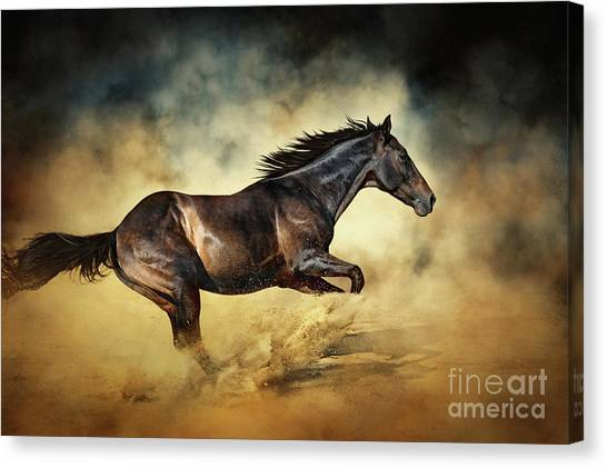 Black Stallion Horse Galloping Like A Devil Canvas Print