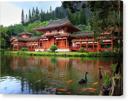 Black Swans At Byodo-in Canvas Print