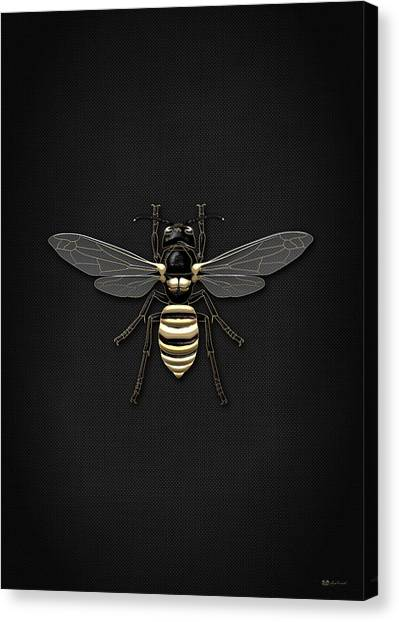Gold Canvas Print - Black Wasp With Gold Accents On Black  by Serge Averbukh