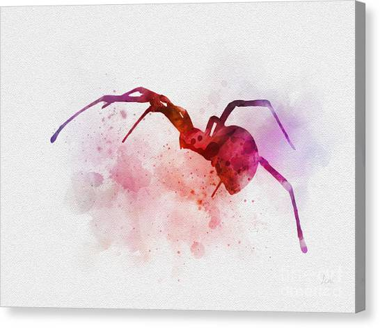 Black Widow Canvas Print - Black Widow Spider by Rebecca Jenkins