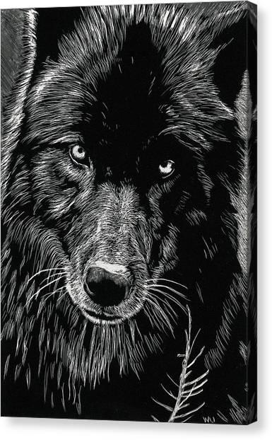 Black Wolf Canvas Print