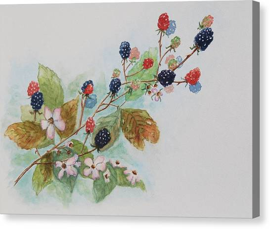 Blackberry Composition Canvas Print by Geraldine Leahy