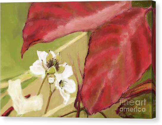 Blackberry-to-be Canvas Print