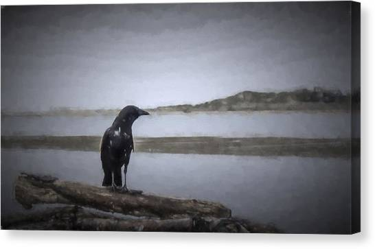 Blackbird Surveys The Bay Canvas Print