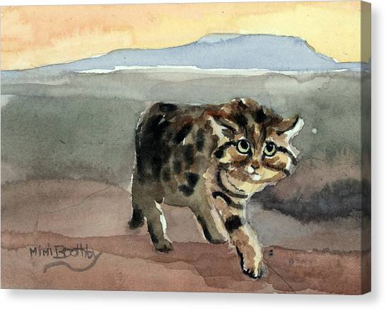 Blackfooted Cat Canvas Print