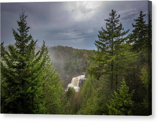 Blackwater Falls In Spring Canvas Print by Michael Donahue