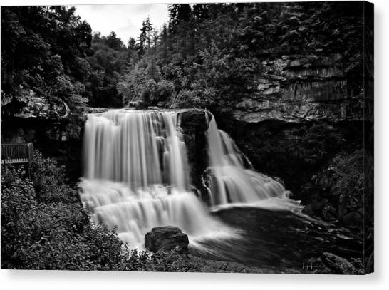 Mossy Forest Canvas Print - Blackwater Falls by Lj Lambert