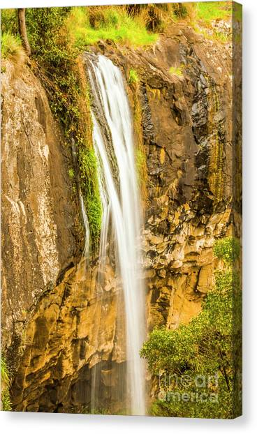 Cliffs Canvas Print - Blackwood Forest Waterfall by Jorgo Photography - Wall Art Gallery