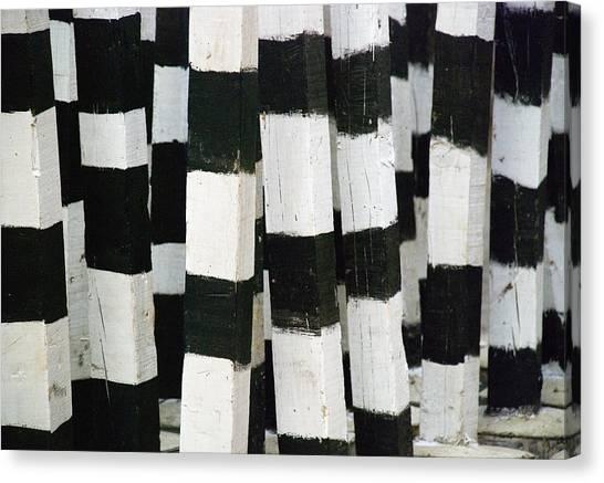Hunt Canvas Print - Blanco Y Negro by Skip Hunt