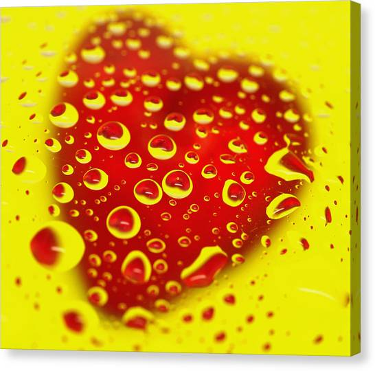 Bleeding Heart Reflections Canvas Print