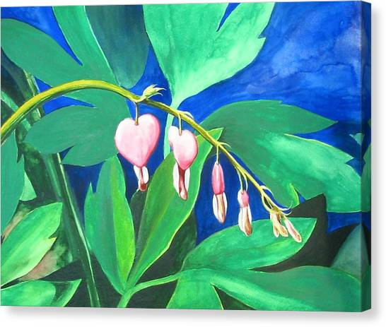 Bleeding Hearts Canvas Print by Carrie Auwaerter