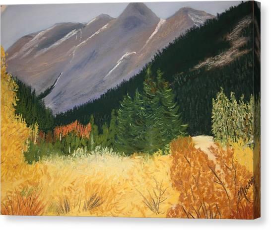 Blm Land Canvas Print
