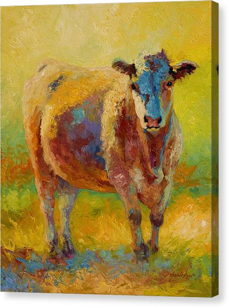Ranching Canvas Print - Blondie - Cow by Marion Rose