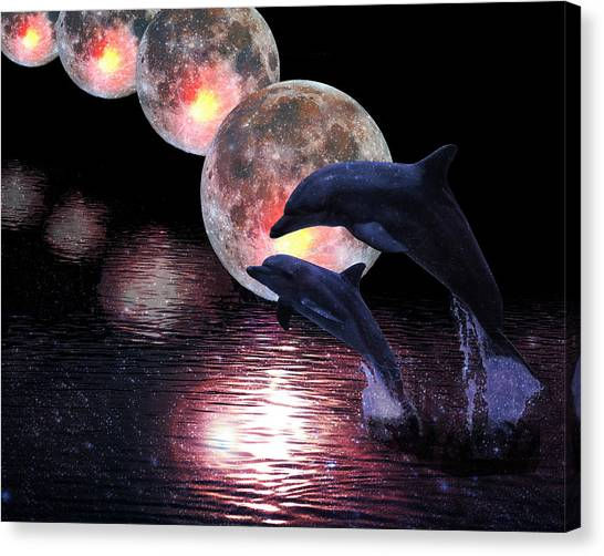 Dolphins In The Moonlight Canvas Print