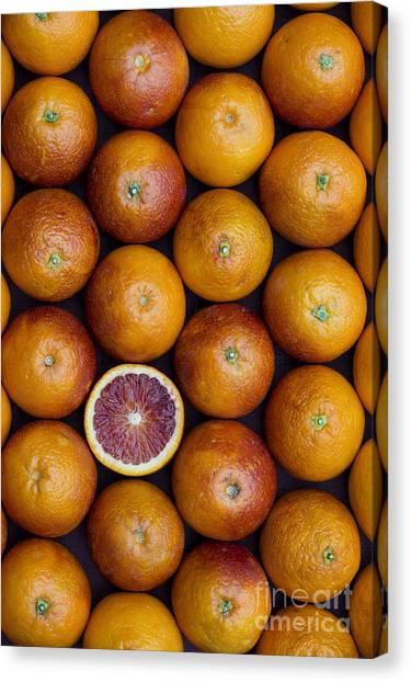 Vegetable Garden Canvas Print - Blood Orange Fruits by Tim Gainey