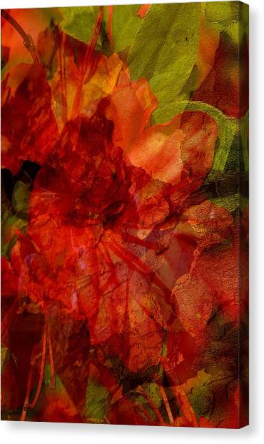 Abstract Digital Art Canvas Print - Blood Rose by Tom Romeo