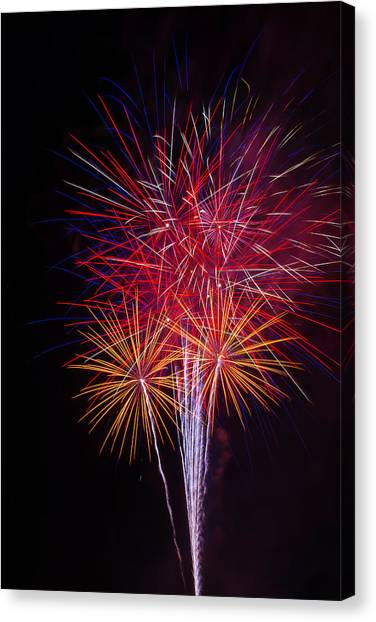 Pyrotechnic Canvas Print - Blooming Fireworks by Garry Gay
