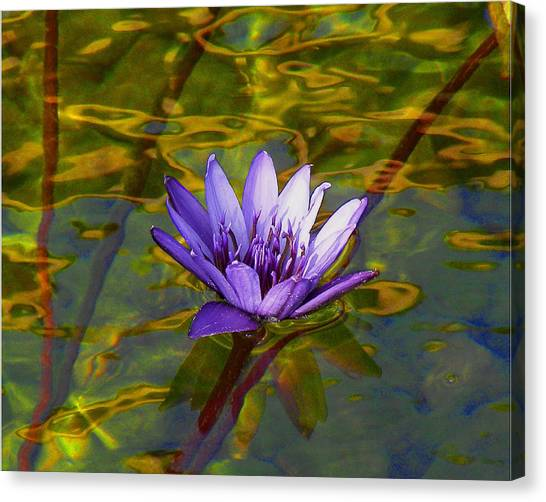 Blooming Into Life's Peace Dedicated To Toni R. Neal Canvas Print by Sherwanda Irvin