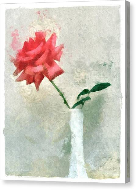 Blooming Rose Canvas Print