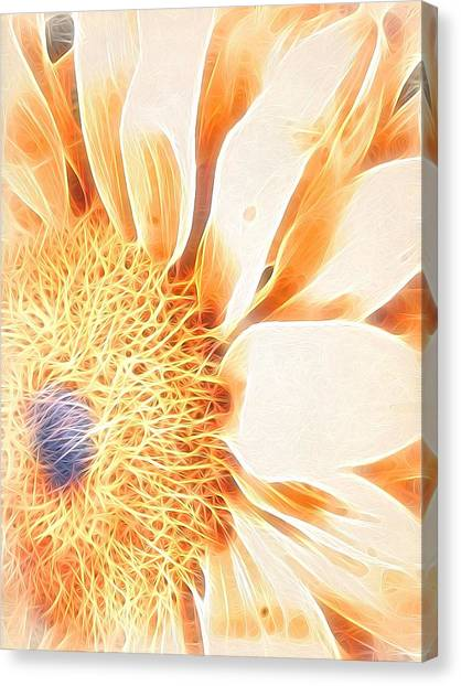 Bloomlit Canvas Print