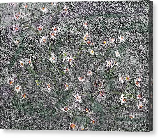 Blooms In Stone Canvas Print