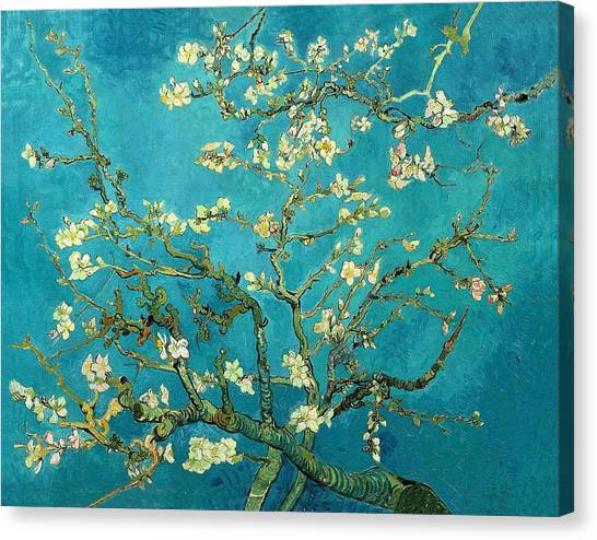 Canvas Print featuring the painting Blossoming Almond Tree by Van Gogh