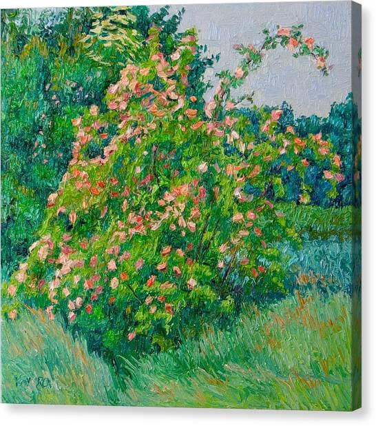 Blossoming Bush Landscape Canvas Print by Vitali Komarov