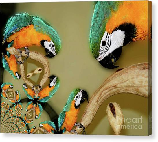 Blue And Gold Macaw Parrot Abstract Canvas Print