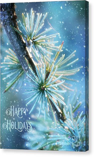 Blue Atlas Cedar Winter Holiday Card Canvas Print