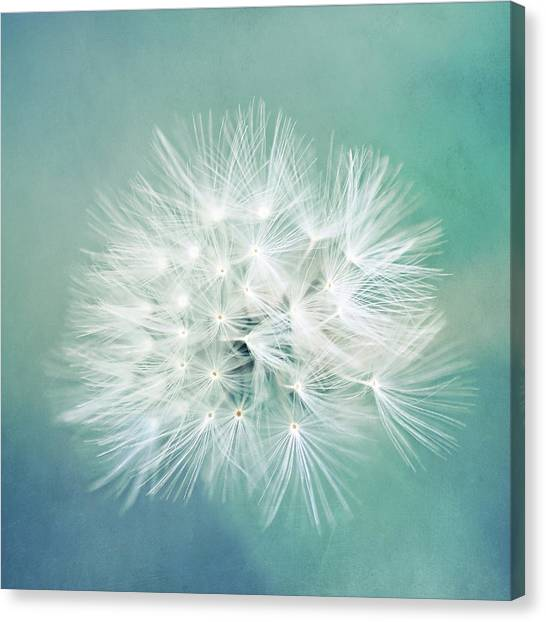 Blue Awakening Canvas Print