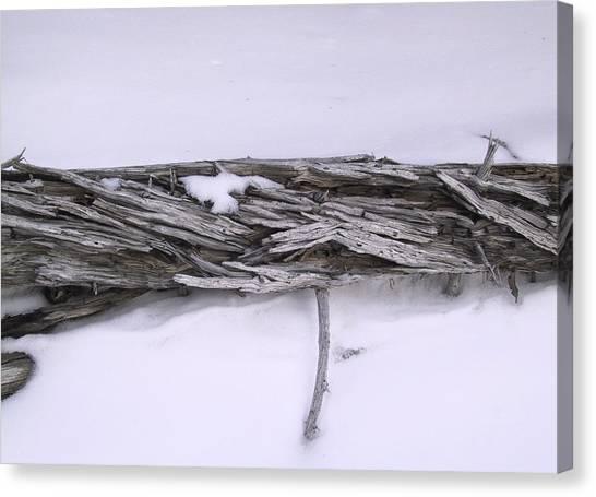 Blue Banff-14 Canvas Print by Kevin Callahan