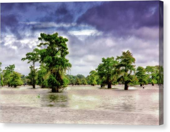 Atchafalaya Basin Canvas Print - Blue Bayou by Jamie Gray