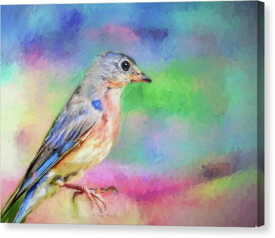 Blue Bird On Color Canvas Print